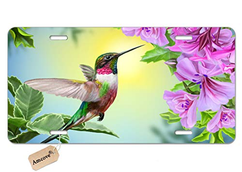 Amcove Hummingbird License Plate