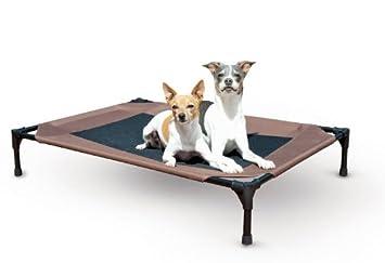 Resistente al agua al aire libre perro cama cuna con elevada/elevado diseño de malla: Amazon.es: Productos para mascotas