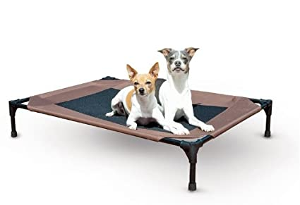 outdoor raised dog bed