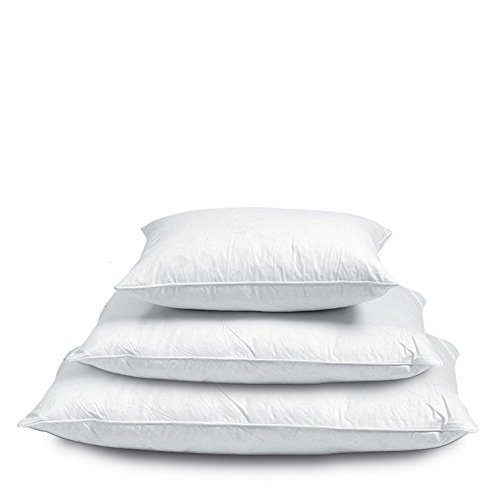 Adams Linens 100% Duck Feather & Down Cushion Pad Filler Insert (16