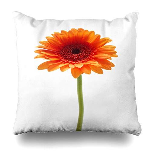 Ahawoso Throw Pillow Cover Square 16x16 Flora Brown Gerber Orange Gerbera Daisy Flower Nature Single Bloom Blooming Design Zippered Cushion Case Home Decor Pillowcase