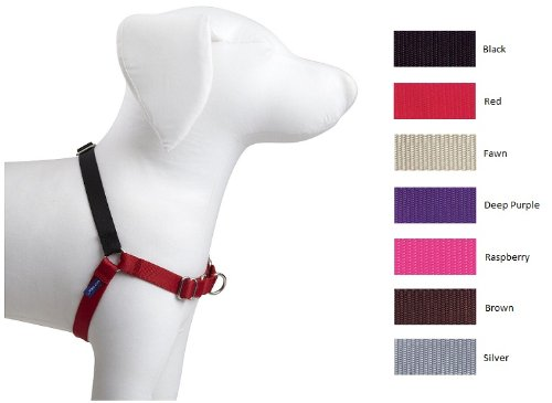 easy walk harness petite small - 2