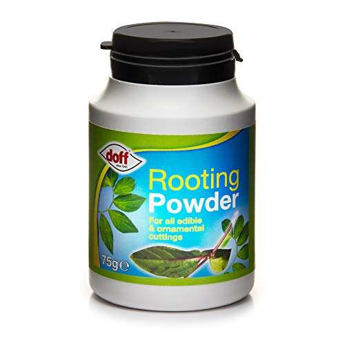 (Doff 75g Hormone Rooting Powder)