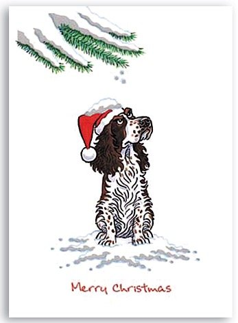 Springer spaniel xmas gifts for teens