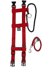 Original Illusion Collar Trainingshalsband & Leine des amerikanischen Hundeflüsterer Cesar Millan, Größe M, Rot