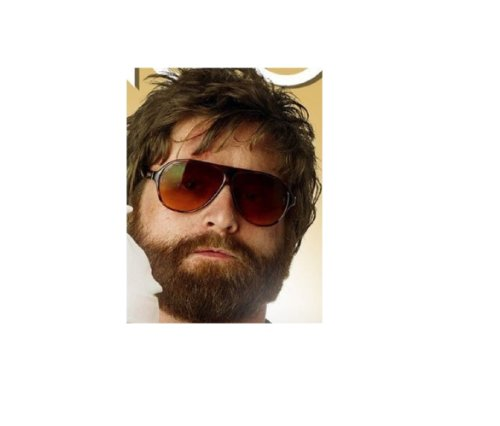 The Hangover Alan Movie Costume Sunglasses Glasses Replica - http://coolthings.us