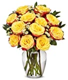 Flowers - Two Dozen Festive Roses
