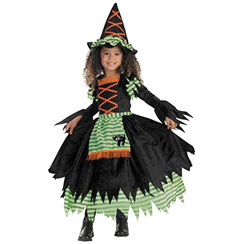 Story Book Witch Costume (Toddler