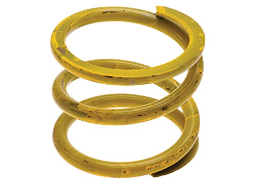 Accumulator Spring (AC Delco 77704D HP Spring, 1-2 Accumulator)