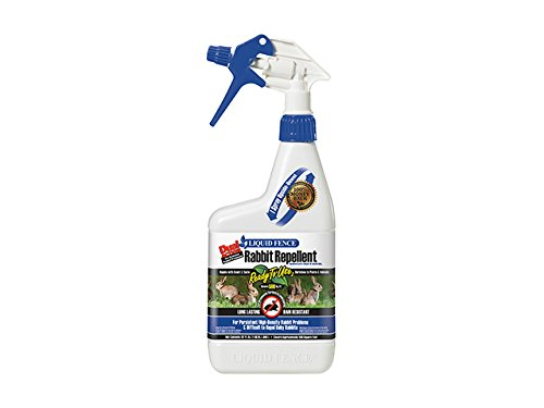 Liquid Fence Dual Action Rabbit Repellent Ready-to-Use
