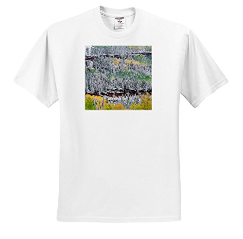 - Danita Delimont - Trees - USA, Colorado, Uncompahgre Forest, San Juan Range, Fall snowstorm. - T-Shirts - White Infant Lap-Shoulder Tee (12M) (TS_259105_67)