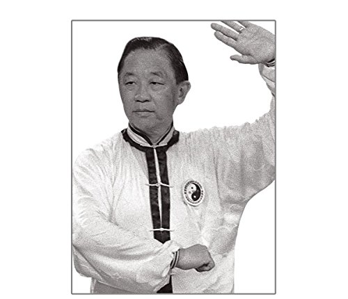 Century Martial Arts Master Dr. Daniel Lee's Tai Chi Chuan Series DVD