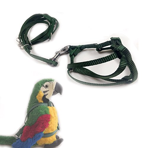 ASOCEA Adjustable Feather Tether Bird Harness and Leash for Yellow Naped Amazons Galah Cockatoos Small to Medium Breed Parrots Fits Birds Chest Between26-40cm ()