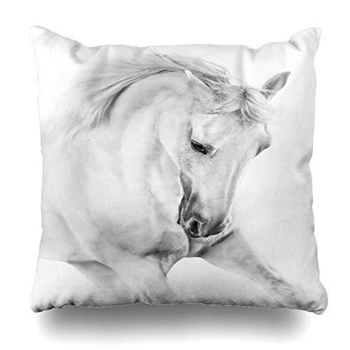 Ahawoso Throw Pillow Cover Square 18x18 Outside Gray Black White Horse Close On Equine Arab Arabian Design Horses Pillowcase Home Decor Cushion Case
