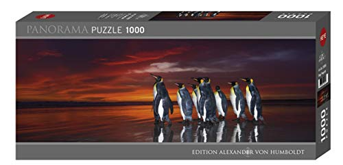 King Penguins Puzzle 1000 Teile Inglese Giocattolo 12 Ott 2018