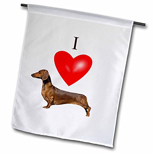 3d Rose 3dRose Fl_17300_1 I Love Dachshunds Garden Flag, .