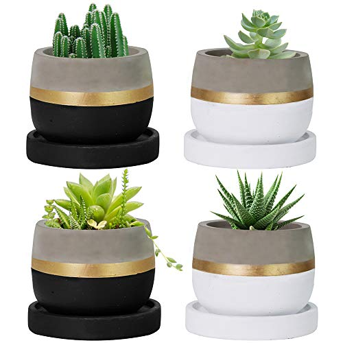 3 Inch Mini Cement Succulent Planter with Saucer Modern Concrete Cactus Plant Pots Small Clay Indoor Herb Window Box Container for Home and Office Decor, Set of 4 (Plant NOT Included)