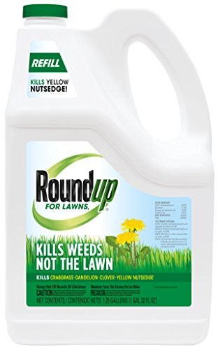 Roundup 4375010 Safe Weed Killer Lawns | Kills Crabgrass, Dandelion for Lawns1 Refill (Northern) -1.25 gal.|, Clover & Yellow Nutsedge | Starts Working Immediately | |, |