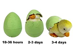Easter Eggs - The Original Hide \'Em and Hatch \'Em Super Grow Eggs - 3 Different Pets that Grow HUGE - 5-6x Size! (Series 1)