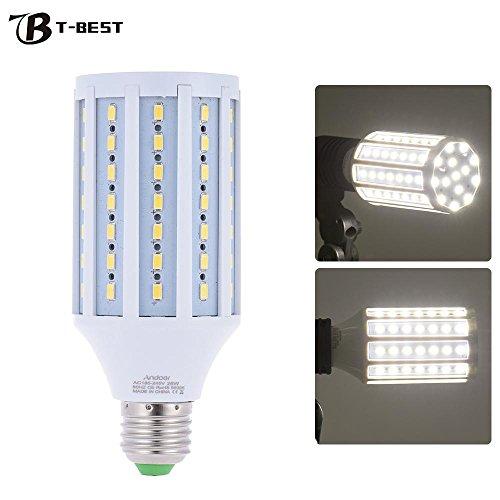 photographic lightbulb - 5