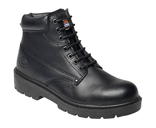 Boot Black Dickies Antrim Safety Super xwBB7S