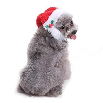 Amazon.com: Photno - Gorro de Navidad para perro, diseño de ...
