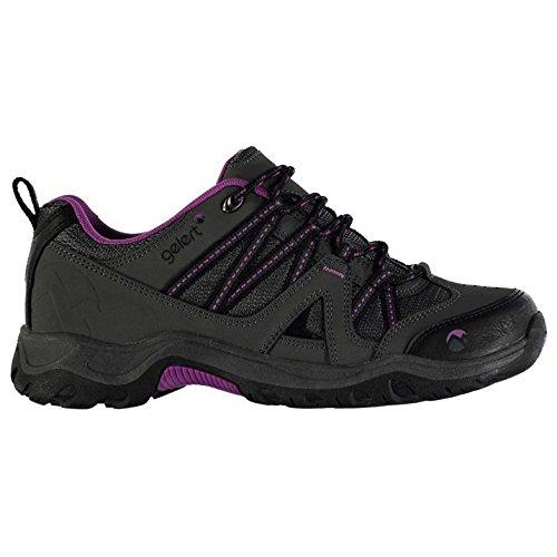 Gelert Womens Ottawa Low Walking Stringato Imbottito Con Cinturino Alla Caviglia Scarpe Outdoor Color Antracite / Viola