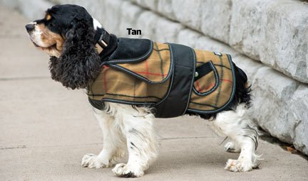 Sherlock Plaid Dog Coat - Camel - Fleece Lined Corduroy Dog Coat