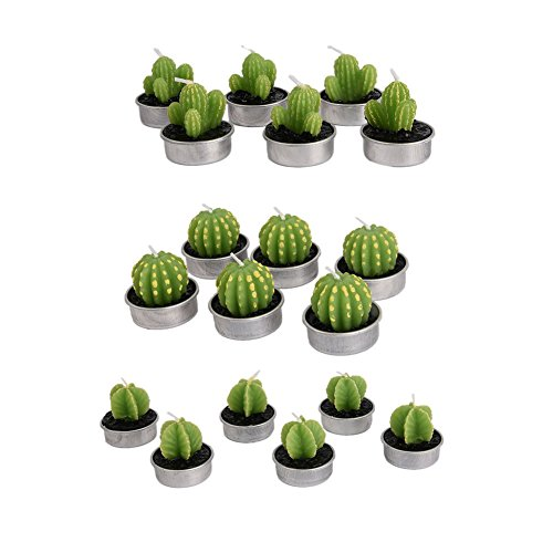 [AMAZZANG-6pcs Wedding Smokeless Candles Cactus Candle Simulation Plant Candle Party Decor] (Costumes Cherry Creek)