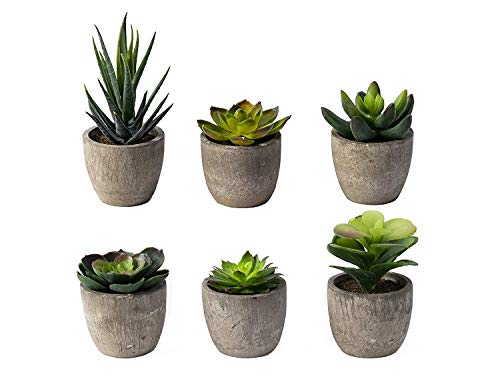 6 Pots Small Artificial Succulent Plants Mini Fake Faux Suculentas Pot For Shelf Kitchen Counter Office Decor Tiny Miniature Desk Plant Succulents Decoration Accessories Potted Plastic Cactus Aloe from Sophia's Garden