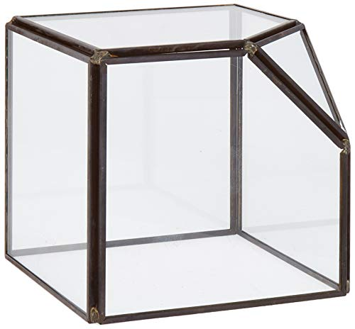 Circleware 03501 Terraria Square Terrarium Clear-Glass with Metal Frame, Home Plant Decor Flower Balcony Display Box and Garden Gifts 4.13