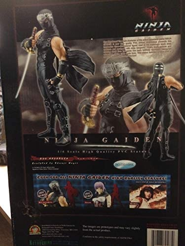 Ninja Gaiden: Ryu Hayabusa 13