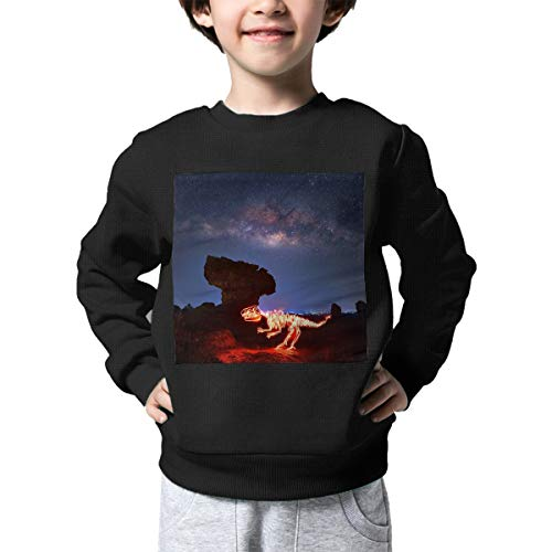 Unisex-Baby Glowing Dinosaur Fossils Long Sleeve Round Neck Casual Pullover Top Knit \r\nSweater for Kid (Boys Girls) Black