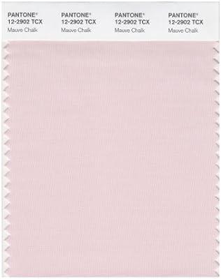 Amazon.com: Pantone Smart color Swatch tarjeta, 12-2902X ...