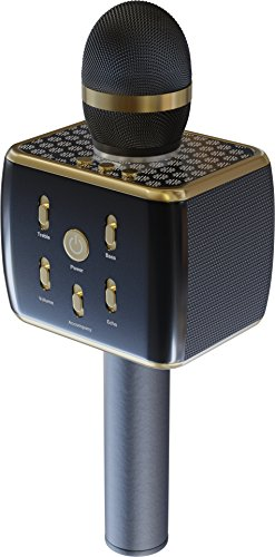 RockDaMic Karaoke Wireless Bluetooth Microphone [NO KARAOKE MACHINE NEEDED] Mic for Kids - Voice Echo & Works as Speaker - Aluminum Alloy - Works for Android and iPhone [ENTERTAIN KIDS FOR HOURS]