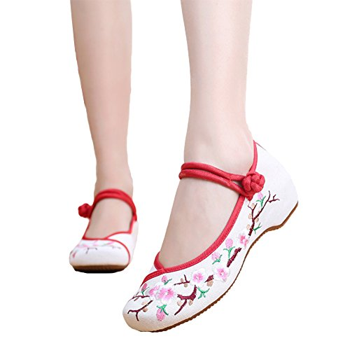 AvaCostume Embroidery Womens Classics Flats Rubber Sole Casual Shoes, White2 36