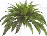 One Designer Quality 50 Inch Spread 92 Branch Artificial Silk Boston Fern Bush Plant