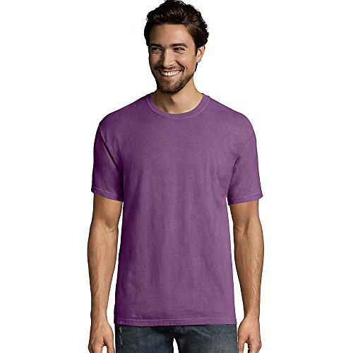 Washed Garment Sleeve T-shirt Short (Hanes Men's ComfortWash Garment Dyed Short Sleeve Tee)