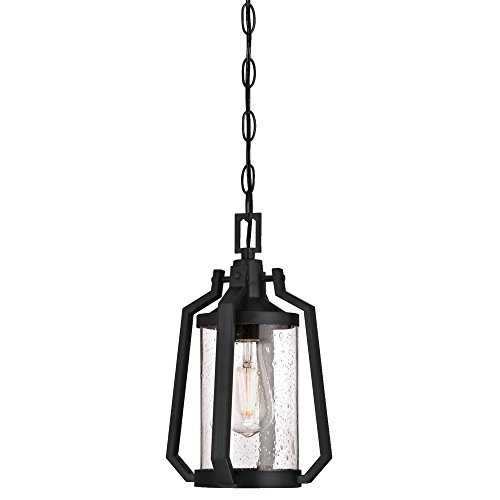 Pendant Lighting Outdoor Medium (Westinghouse Lighting 6347600 Ridley One-Light Outdoor Pendant, Matte Brushed Gun Metal Finish with Clear Seeded Glass)