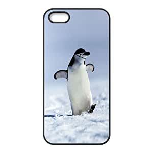 The Arctic Penguins Hard Plastic phone Case Cove For Apple Iphone 5 5S Cases XXM9117374 by ruishername