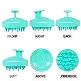 Heeta Hair Scalp Massager, Wet and Dry Shampoo