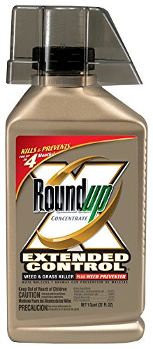 - Roundup 5705010 Extended Control Weed and Grass Killer Plus Weed Preventer Concentrate, 32-Ounce