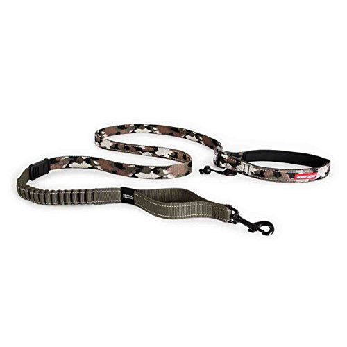 EzyDog Road Runner Best Hands Free Walking, Jogging, and Running Zero Shock Bungee Dog Leash - Reflective Stitching and Adjustable Waist Belt - Provides Superior Comfort, Safety, and Control (Green C) -