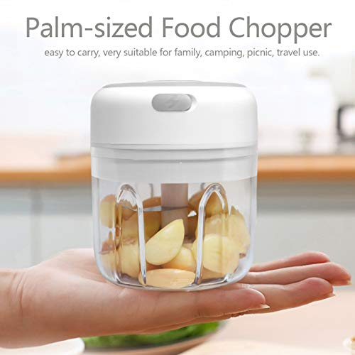 Huasida Mini Food Chopper Small Food Processor Mincer Blender Suitable for Onions Garlic Vegetables Nuts Baby Food (White, 250ml)