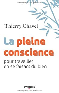 La pleine conscience pour travailler en se faisant du bien par Thierry Chavel