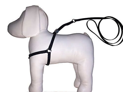 Buy s dog harness