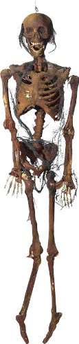 [HANGING ROT CORPSE SKELETON BLOODY HALLOWEEN PROP DECORATION HAUNTED HOUSE NEW - FM68353] (Haunted House Prop)