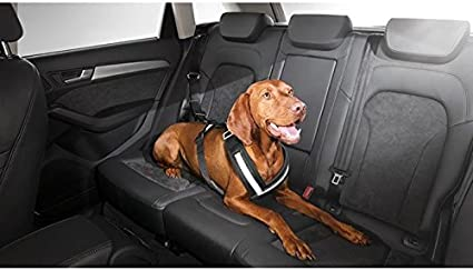 Audi 8X0061680A Protective Cover seat Panels//Rear Side Doors