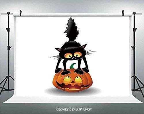 Background Black Cat on Pumpkin Spooky Cartoon Characters Halloween Humor Art 3D Backdrops for Interior Decoration Photo Studio Props