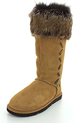 70c5ff72e0c UGG Women's Rosana Chestnut Suede Boot 6 B (M): Amazon.com: DUAE TRADE